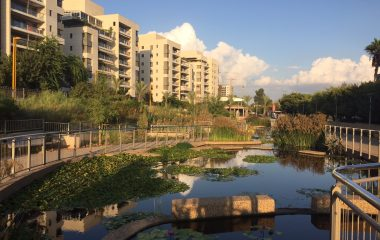 Ayala Water & Ecology